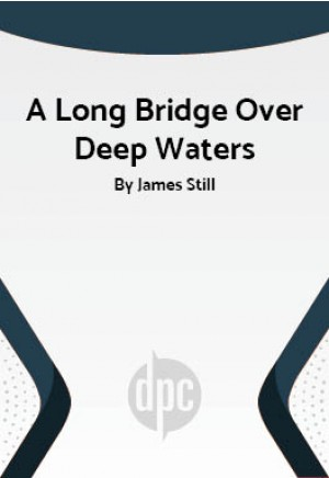 A Long Bridge Over Deep Waters