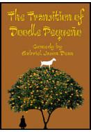 The Transition of Doodle Pequeño (Digital Script)